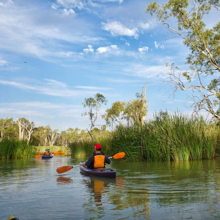 Kayakers paddling on the Murray River with Canoe Adventures © Canoe Adventures