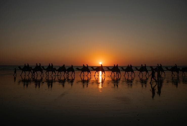 Camel Train walks along Cable Beach in Broome at sunset © Tourism Australia