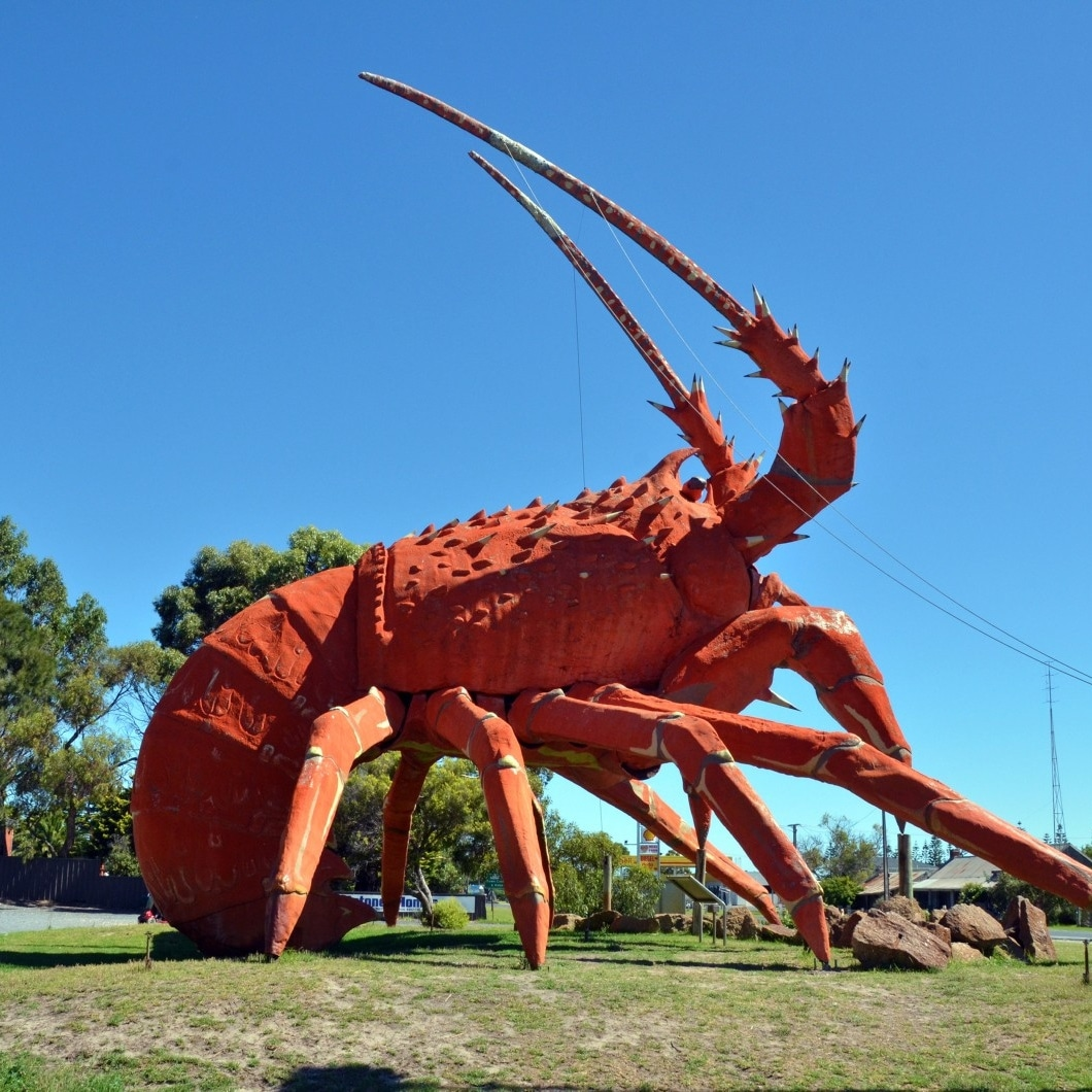 The Big Lobster, Kingston SW, SA © South Australian Tourism Commission