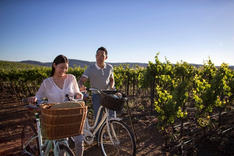 Couple walks their bicycles alongside green grapevines in the Barossa Valley © Tourism Australia