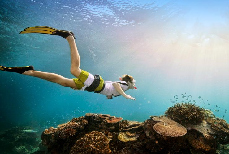 Man with snorkel and fins swims over coral reef © Darren Jew