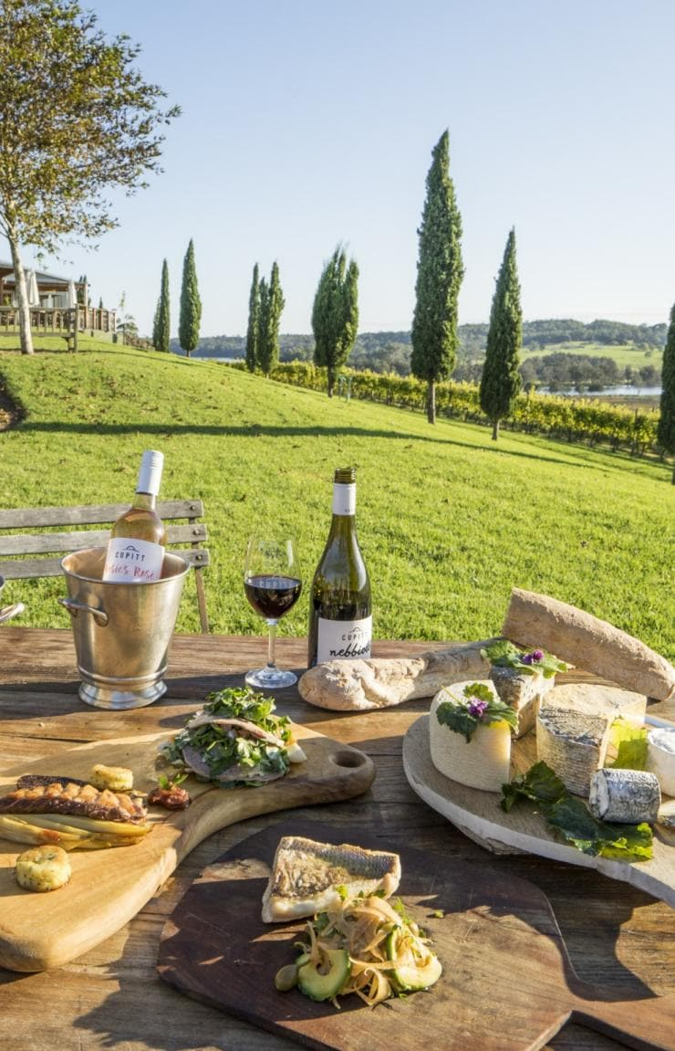 Picnic of wine and food set up on the lawn at Cupitt's Winery © Destination NSW