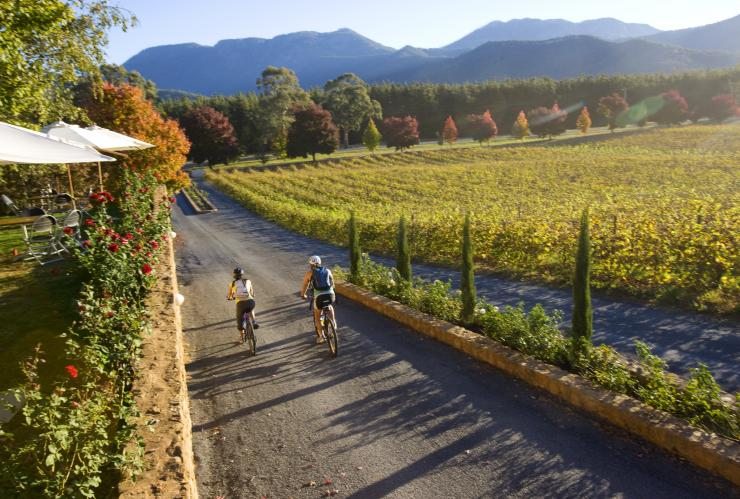 Two people cycling through Feathertop Winery © David Hannah