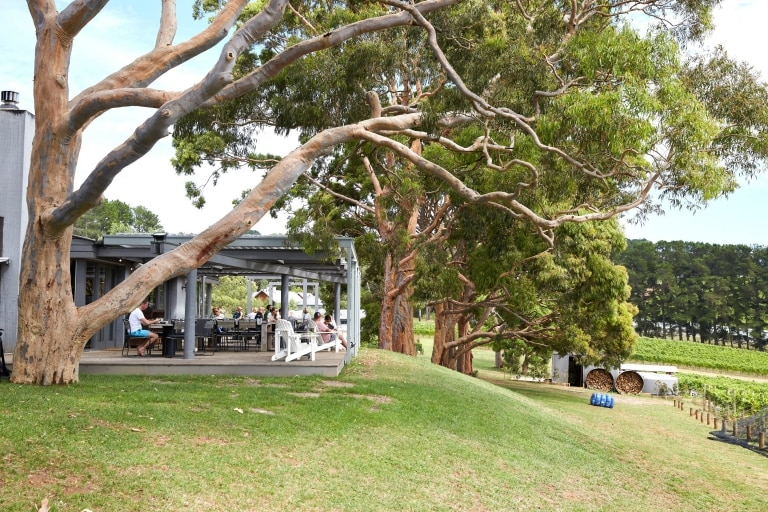 Outdoor seating at Polperro Winery © Visit Victoria