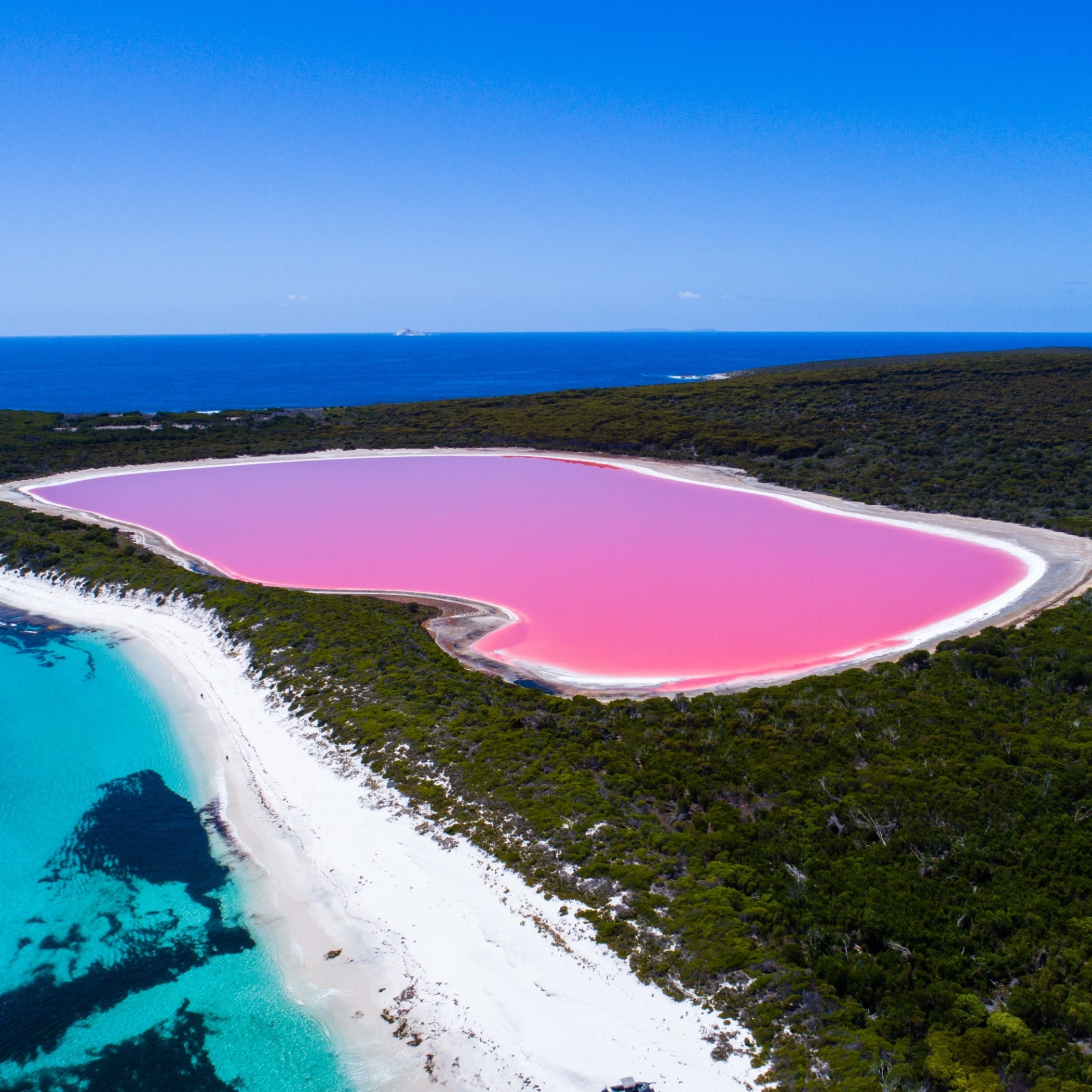 Aerial view of Lake Hillier, Middle Island near Esperance © Tourism Western Australia