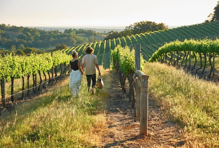 Couple walking through vineyards at Willow Bridge Estate © Frances Andrijich