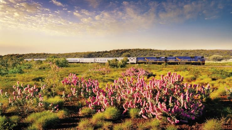 Indian Pacific, Adelaide, SA © Journey Beyond