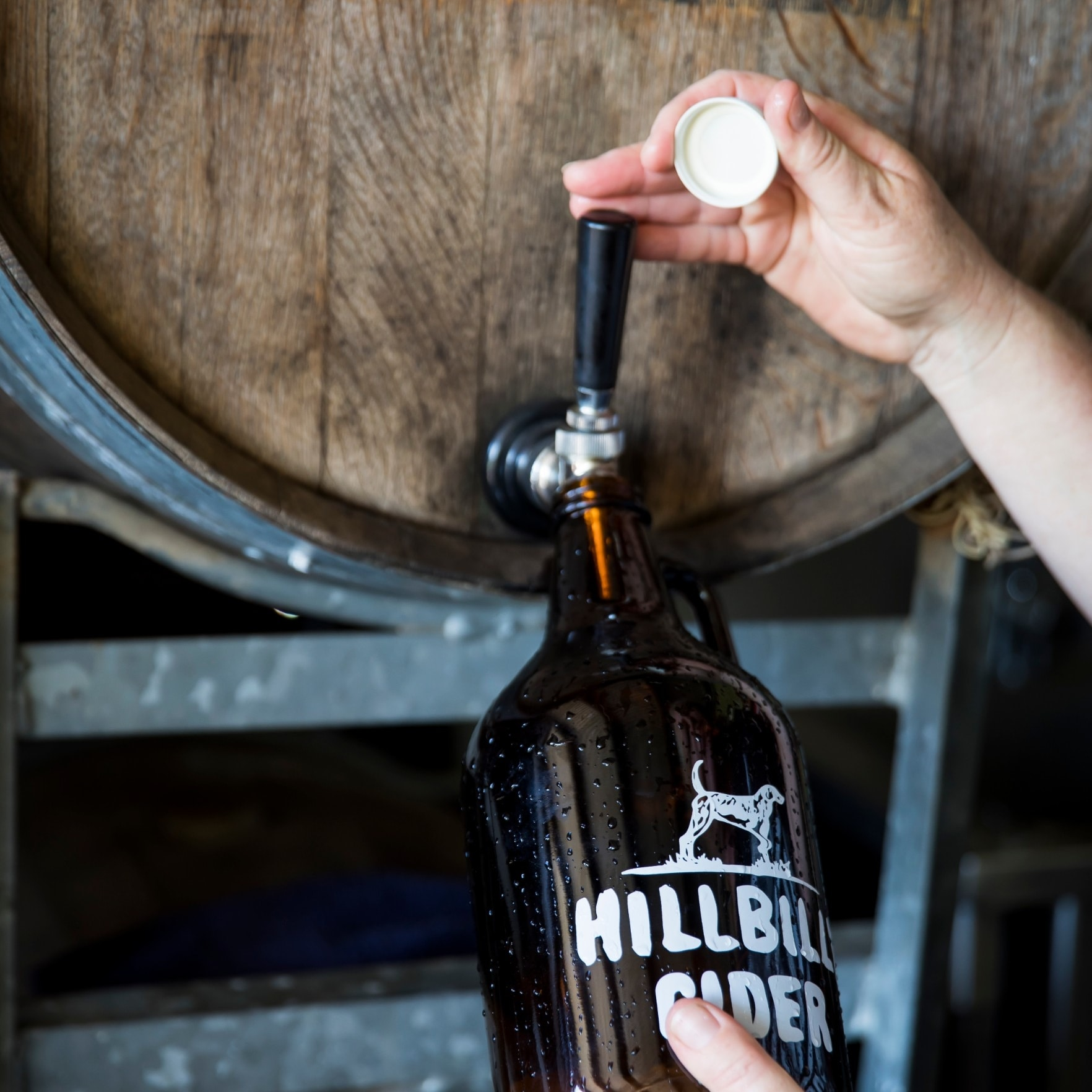Hillbilly Cider growler being filled with cider © Destination NSW