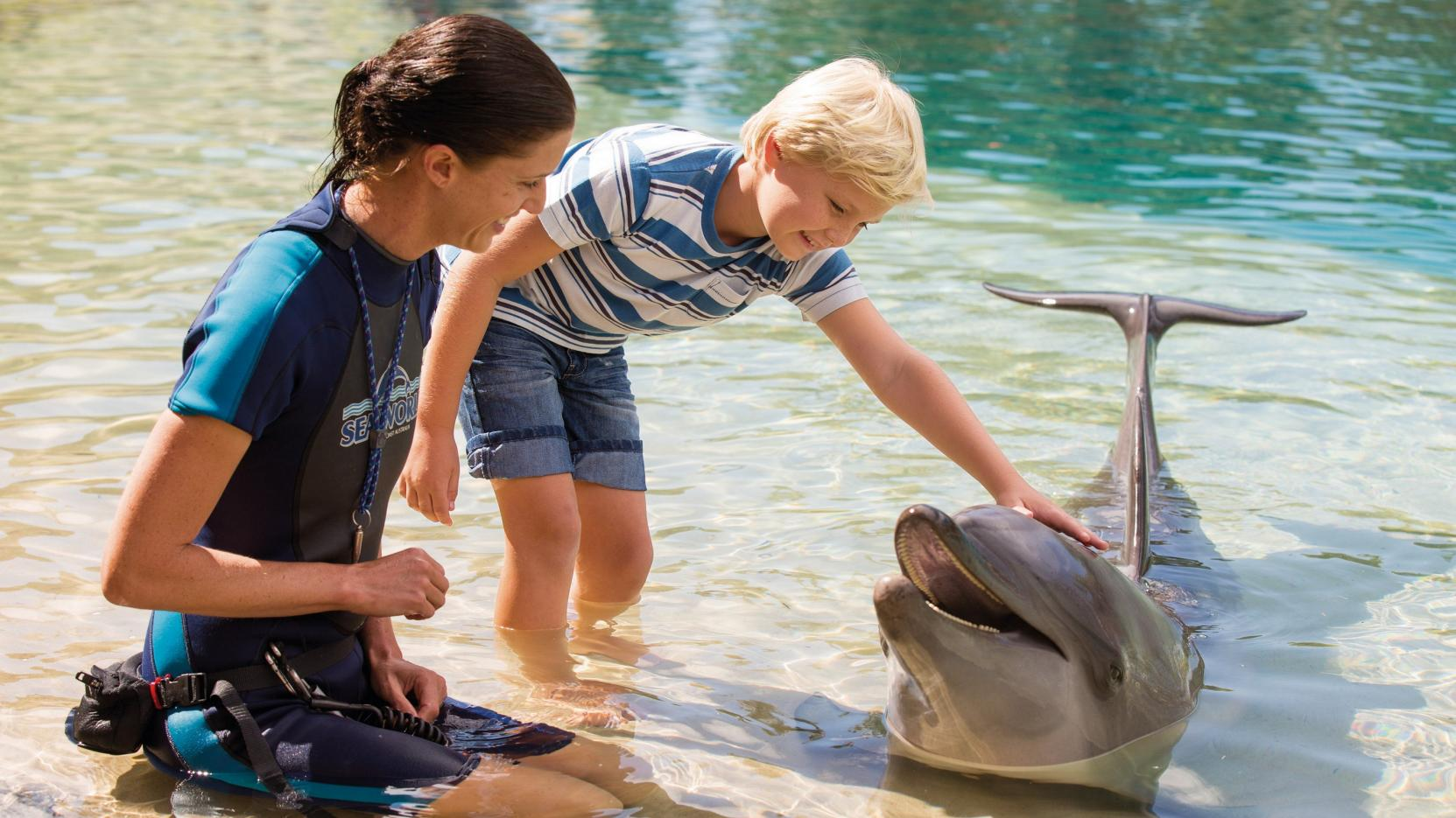 Sea World, Main Beach, QLD © Tourism and Events Queensland