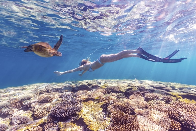 Snorkelling with turtle at Ningaloo Reef, WA © Australia's Coral Coast