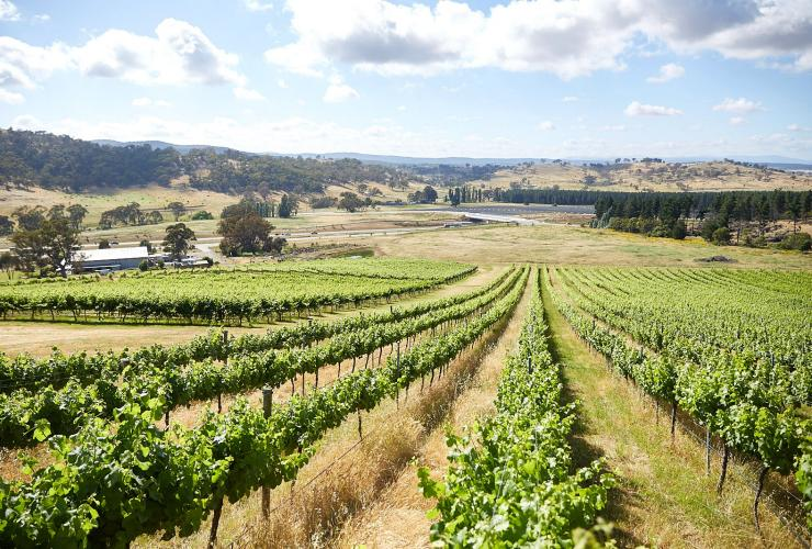 Canberra District Wine Region, ACT © VisitCanberra