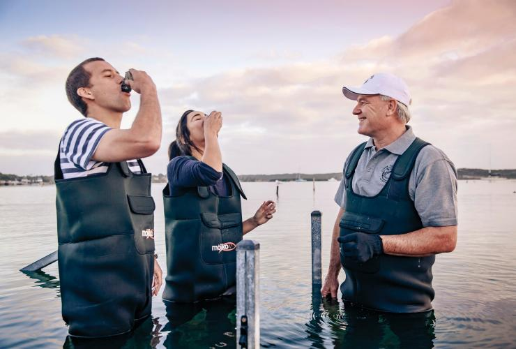 Oyster Farm Tours, Esplanade, Coffin Bay, Eyre Peninsula, SA © South Australian Tourism Commission