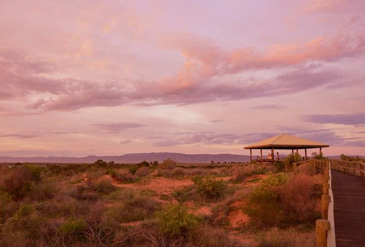 Australian Arid Lands Botanic Garden, Port Augusta, SA © South Australian Tourism Commission