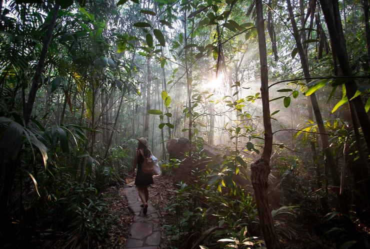 Woman walking through rainforest ©Tourism Australia