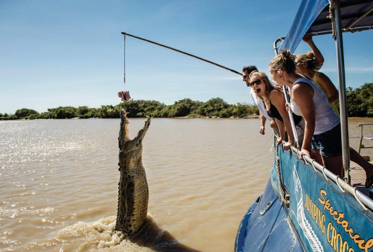 Crocodile jumping in the Adelaide River © Shaana McNaught 2012