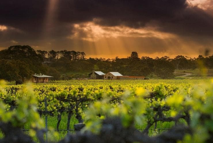 Sun rays through dark clouds over St Hugo winery in the Barossa Valley, Adelaide, South Australia © St Hugo
