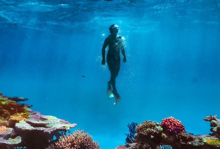 Snorkelling, Magnetic Island, QLD © Townsville Enterprise