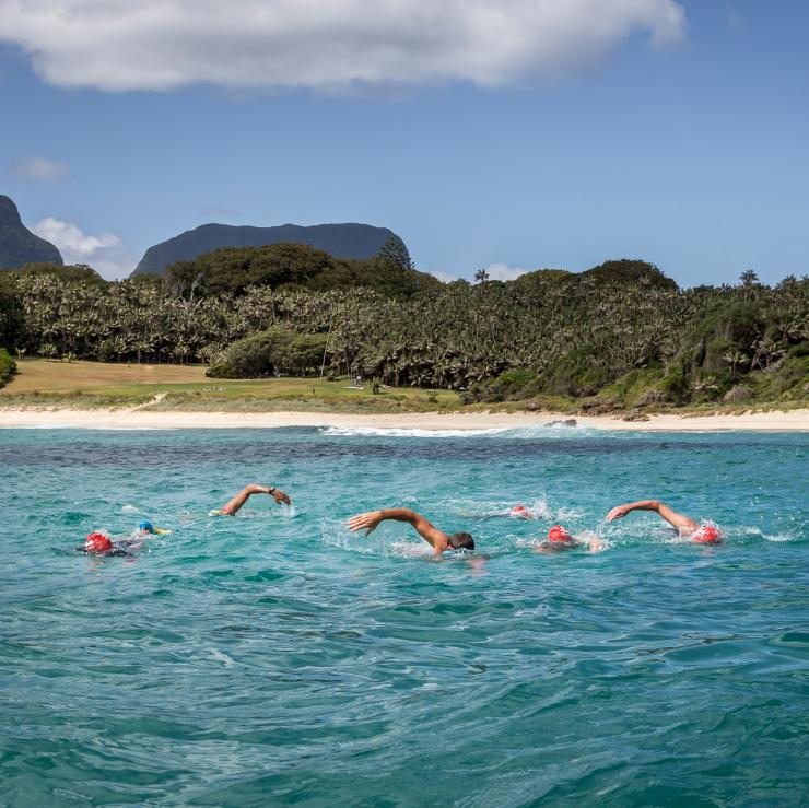 Swimmers participating in the Ocean Swim Week event at Lord Howe Island © Luke Hanson/Pinetrees Lodge