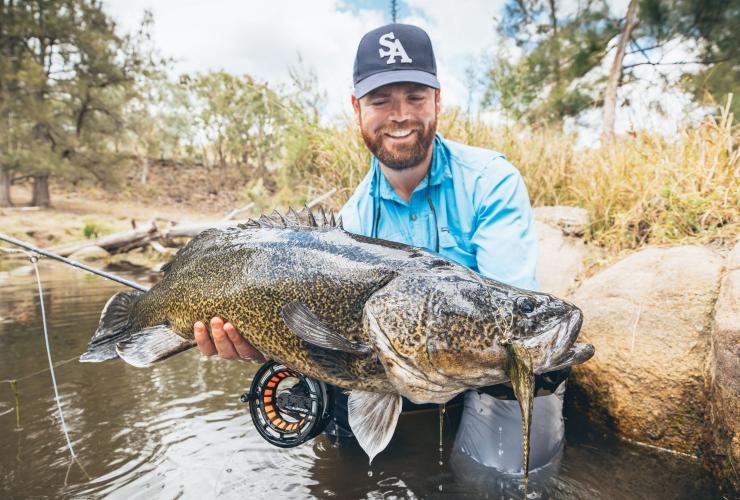 Murray cod, NSW © Aussie Fly Fisher