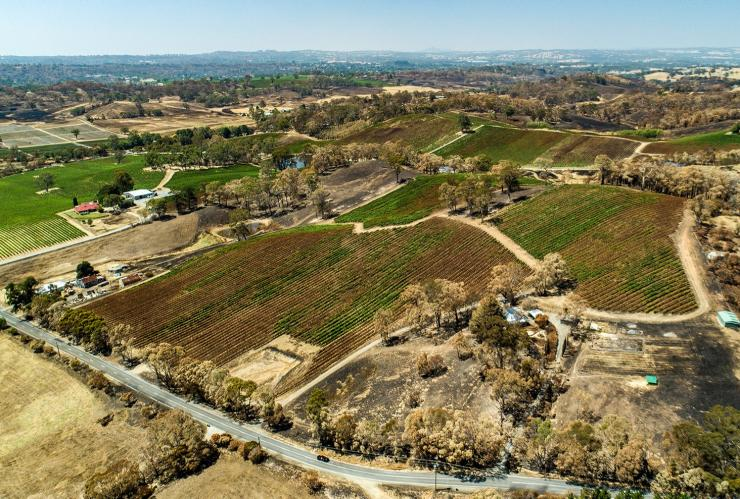 Aerial view of bushfire damage to Golding Wines' vineyard in the Adelaide Hills © Golding Wines/Adelaide Aerial