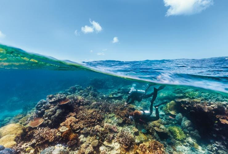 Snorkelling Agincourt Reef, Port Douglas, QLD © Tourism and Events Queensland
