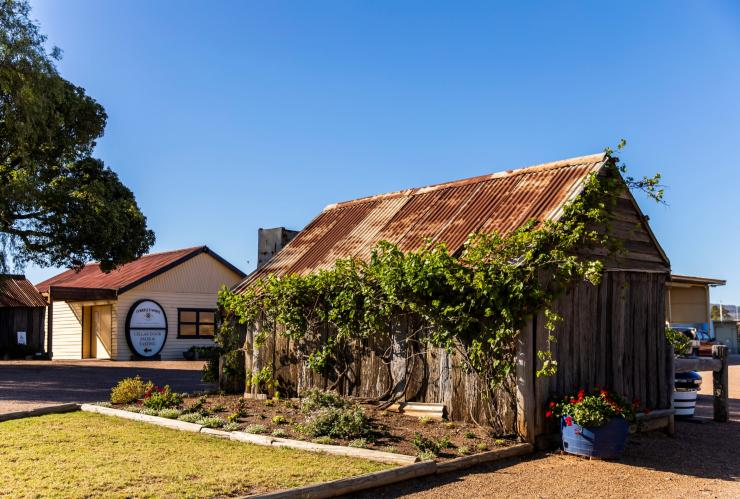 Scenic grounds of Tyrrell's, Pokolbin, NSW © Destination NSW