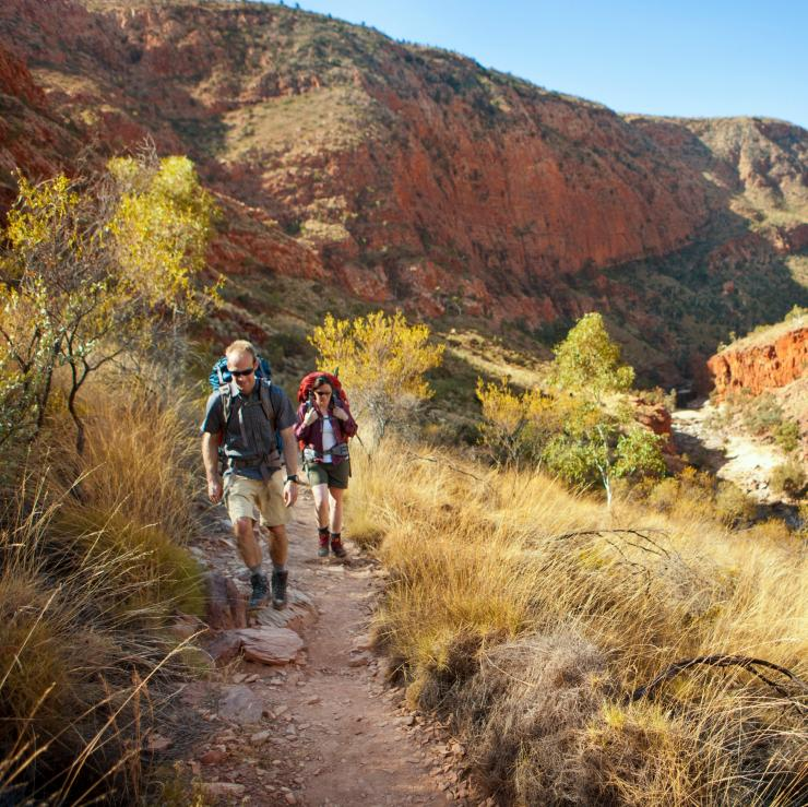 Hikers walking along the Larapinta Trail in Tjoritja/West MacDonnell National Park  © Tourism NT/Paddy Pallin