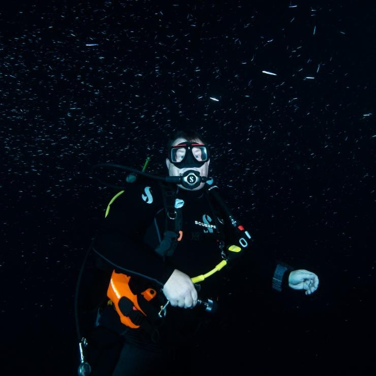 Scuba diver on a night dive with Perth Scuba © Perth Scuba/Johanna Pool