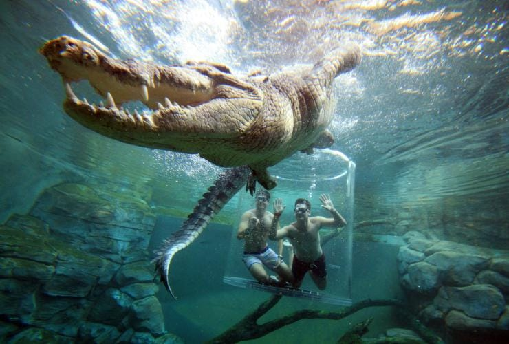 Visitors diving in the Cage of Death with a saltwater crocodile at Crocosaurus Cove © Tourism NT/ Shaana McNaught