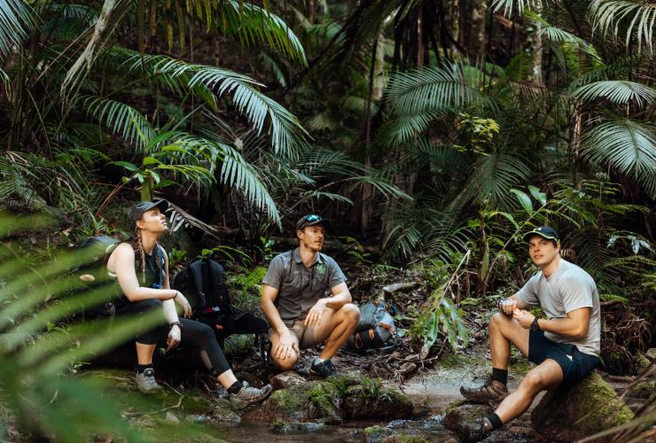 Hikers crouched in the Lamb Range in Cairns © FNQ Nature Tours
