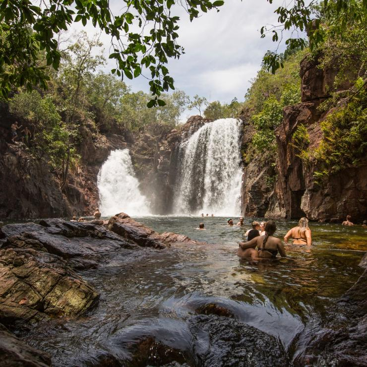 Swimmers enjoy a dip in Florence Falls in Litchfield National Park in the Northern Territory © Tourism Australia
