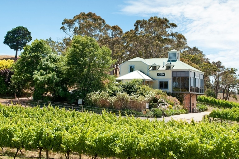 Hahndorf Hill Winery vineyard and building