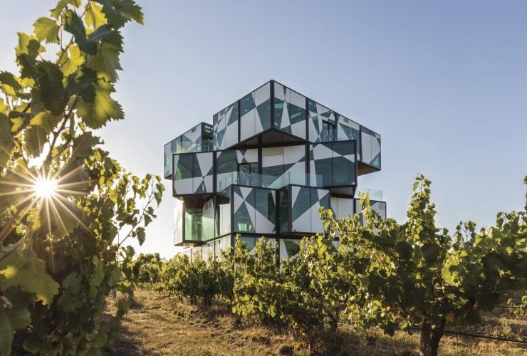 The Rubik's Cube shaped d'Arenberg Cube restaurant sits behind green grapevines in McLaren Vale © d'Arenberg Pty Ltd