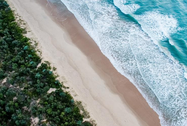 Aerial view of a green forest and blue ocean separated by a stretch of golden sand in Gippsland © Visit Victoria