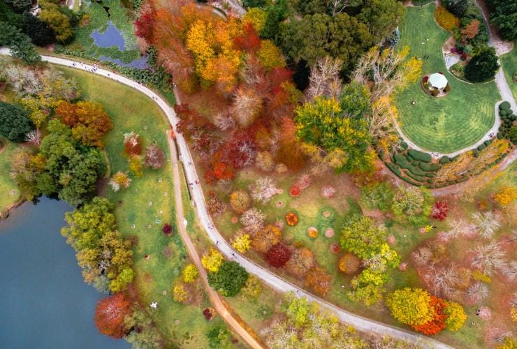 An aerial view of Mount Lofty Botanic Garden © South Australia