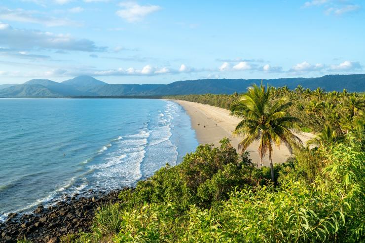 Aerial view of beach, Port Douglas, Queensland © Tourism Australia