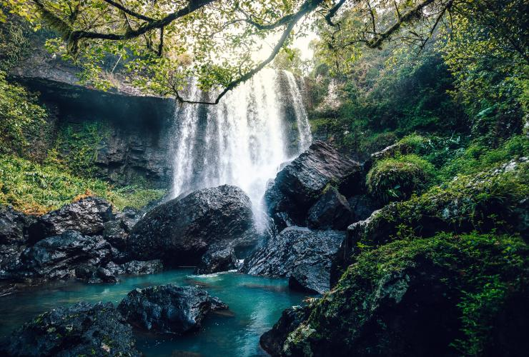Zillie Falls waterfall in the Atherton Tablelands © Tourism and Events Queensland