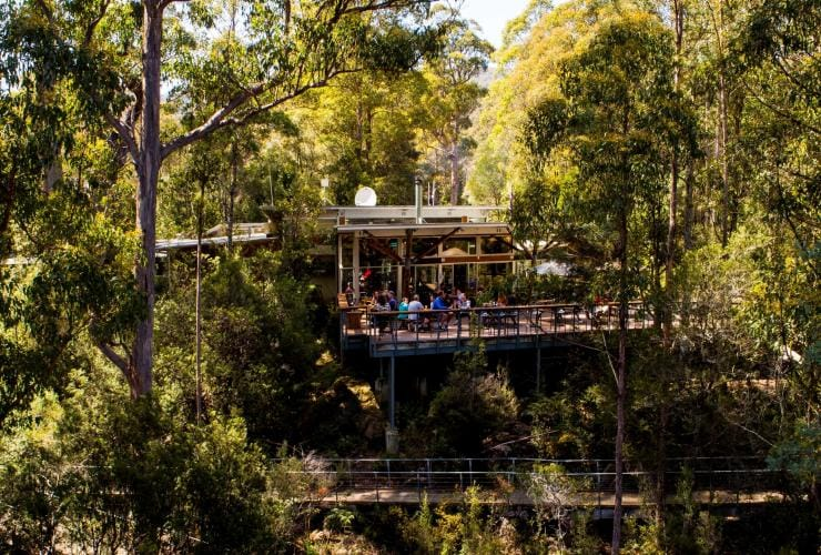 View of visitors dining outside at Tahune Adventures Visitor Centre and Café © Tahune Adventures Tasmania
