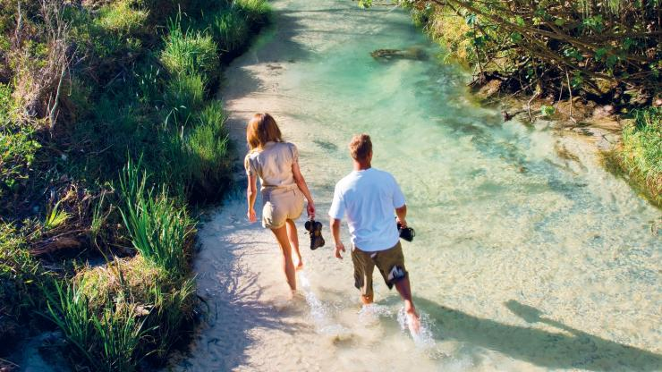 Eli Creek, Fraser Island, QLD © Tourism and Events Queensland