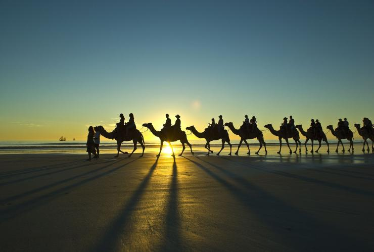 Camels at sunset on Cable Beach, Broome, WA © Tourism Western Australia