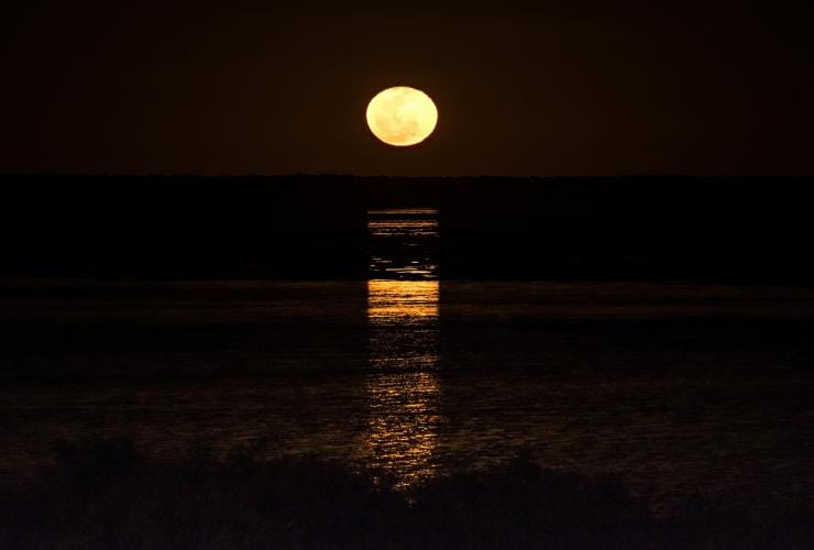 Staircase to the Moon, Roebuck Bay, Broome, WA © Tourism Western Australia