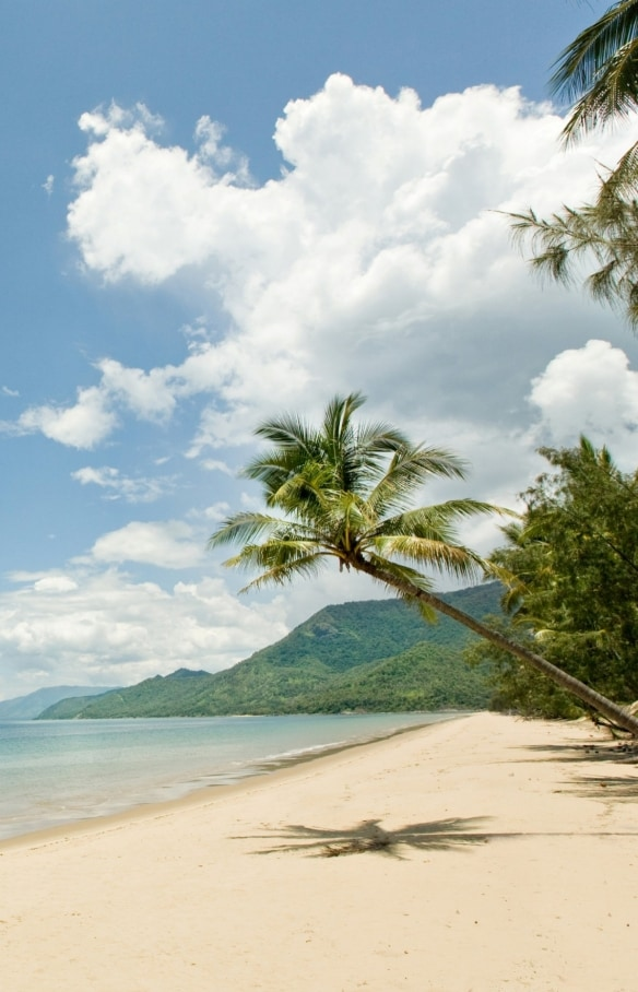 Kayaking, Port Douglas, QLD © Tourism Port Douglas and Daintree