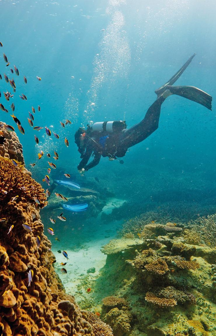 Great Barrier Reef, Heron Island, QLD © Paul Giggle, Tourism and Events Queensland