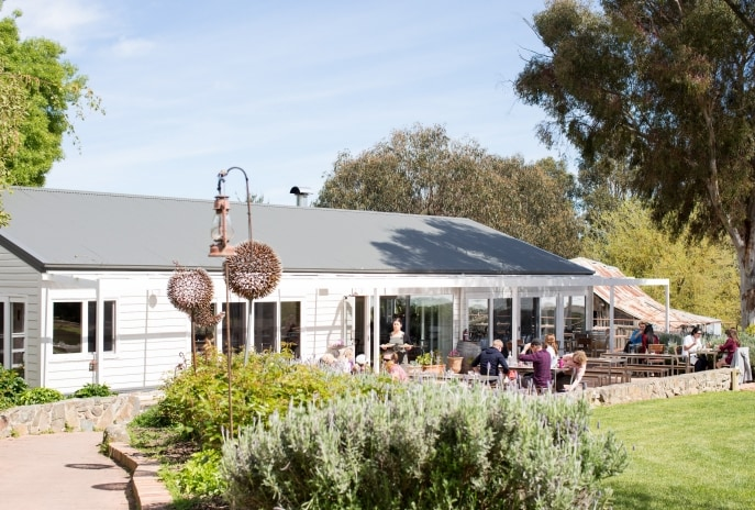 Four Winds Vineyard, Murrumbateman, ACT © Lauren Campbell, VisitCanberra