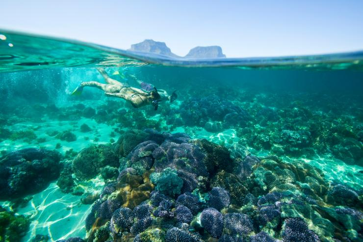 Lord Howe Island, NSW © Trevor King, Destination New South Wales