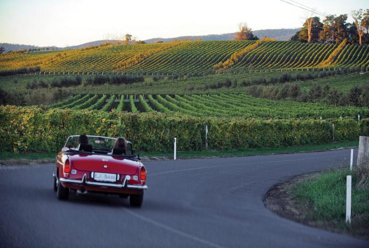 Car driving along the Tamar Valley Wine Route © Tourism Tasmania/Tamar Valley Wine Route
