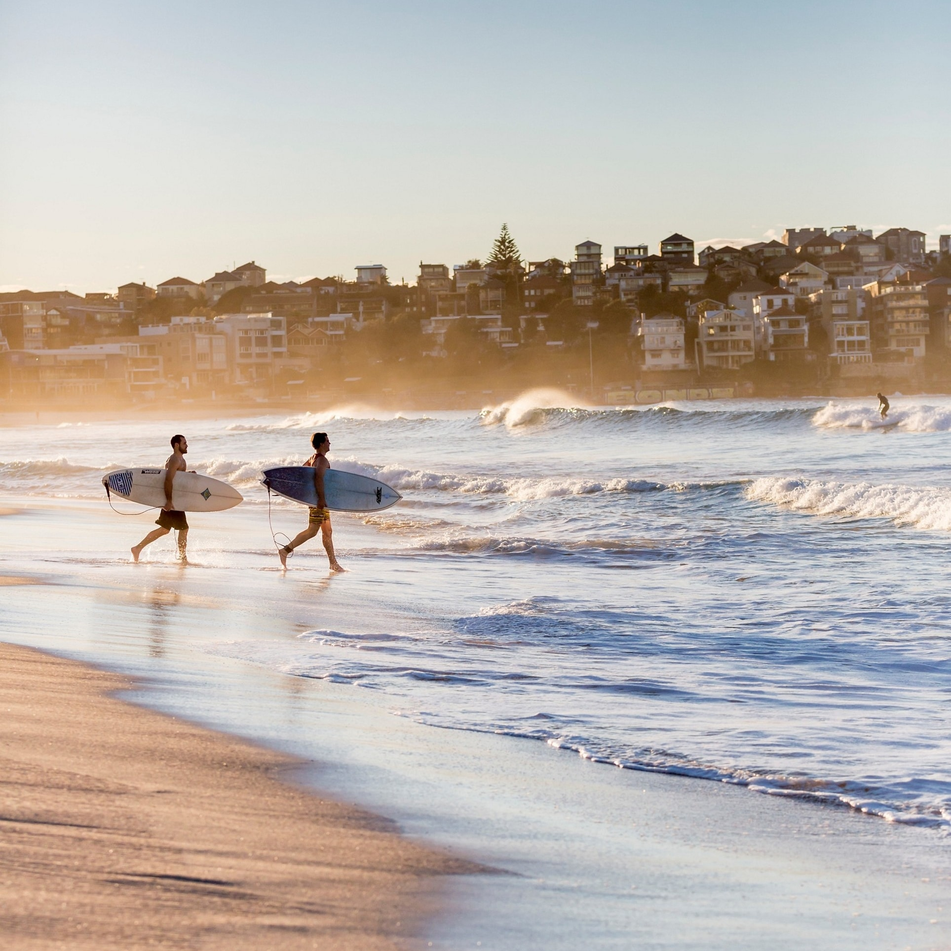 Surfers running into the ocean at Bondi Beach © Daniel Boud