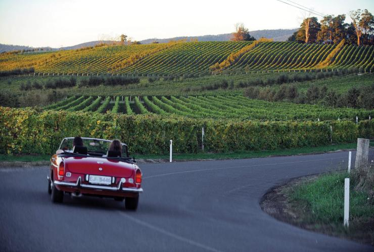 Touring Tamar Valley Wine Route, Kayena, TAS © Tourism Tasmania, Tamar Valley Wine Route