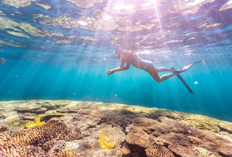 Snorkeller floats above a the colourful Ningaloo Reef at Coral Bay © Tourism Western Australia