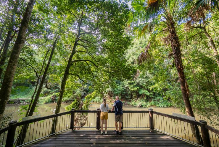 People standing by the river in the Eungella National Park © Tourism and Events Queensland